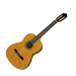 Guitare Esteve 01